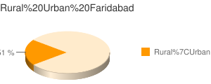 Faridabad census population